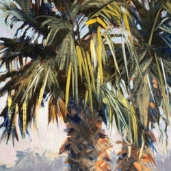 2017-0317 Grayton Palms