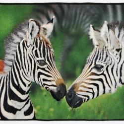 Zebras 23 X 28.jpg