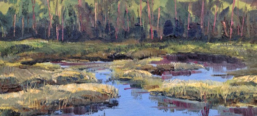 Watch Local 30A Artist Joan Vienot Paint Camp Creek Wetlands