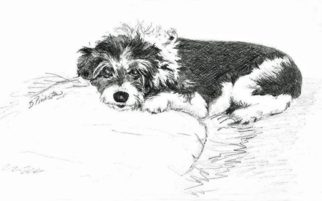 Pet Portraits for Christmas by Betty Pinkston