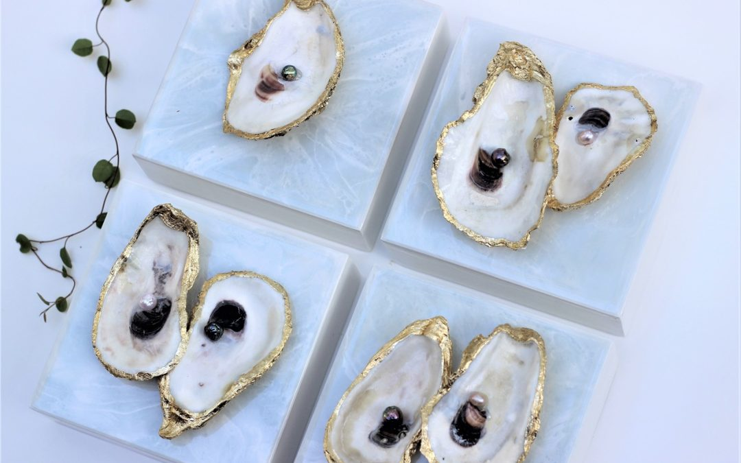 Oyster & Freshwater Pearl Paintings!